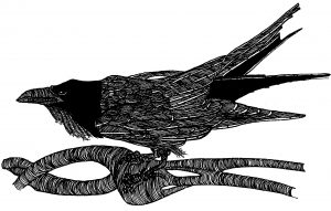 The Raven Short Story Contest @ Pulp Literature Press |  |  |