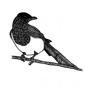Magpie Award For Poetry @ Pulp Literature Press |  |  |